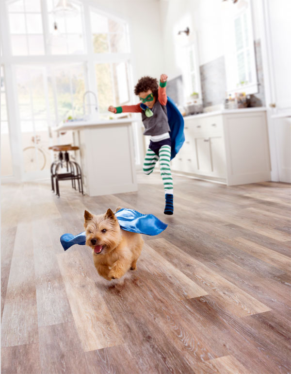 Get Free Carpet Installation Interest Free Financing During Family Rules Event Great Southeast Flooring America